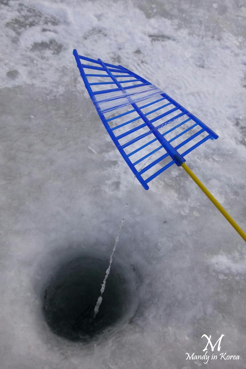 【韓國冬天】京畿道清平冰上釣魚
